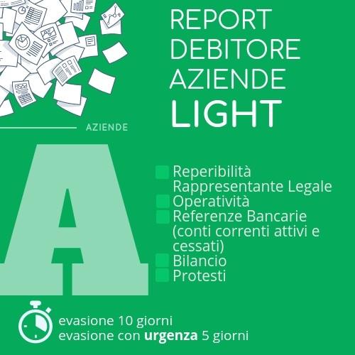 Report debitore aziende light
